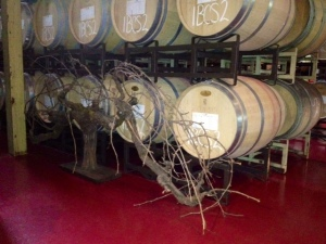 Chappellet Winery Tour_2