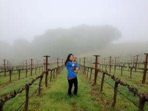 Chappellet Winery Tour_4